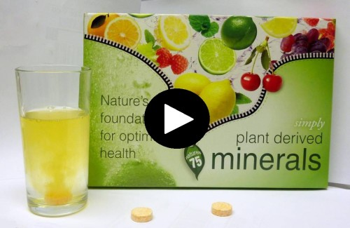PLANT DERIVED MINERALS – THE FOUNDATION OF LIFE !!